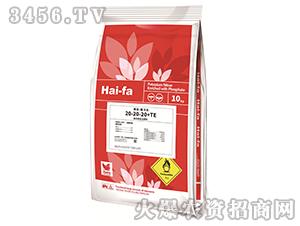 高浓度水溶肥料20-20-20+TE-魔力法-haifa品牌
