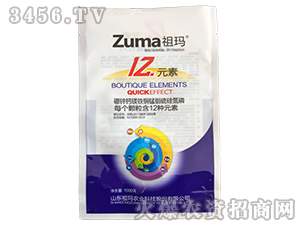 12元素(袋)-祖玛