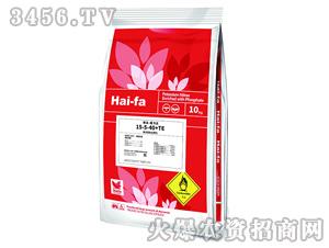 高浓度水溶肥料15-5-40+TE-魔力法-haifa品牌