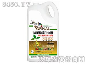 抗重松壤生物菌-祖玛