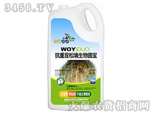 5kg抗重茬松壤生物菌