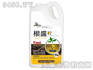 含氨基酸水溶肥料-根盛