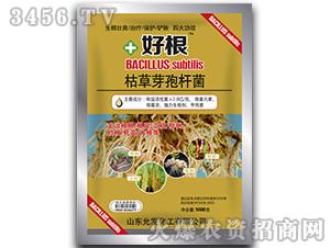 枯草芽孢杆菌(1000