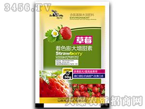 草莓着色膨大增甜素-祖玛