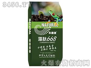 藻肽668-禾蓓康-龙灯
