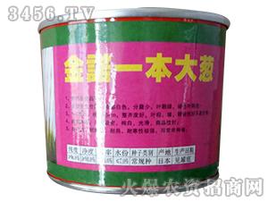 金诺一本大葱-大葱种子-沃福鑫