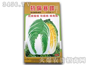 抗病寒峰-大白菜种子-沃福鑫
