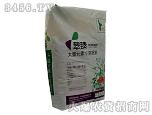 大量元素水溶肥料19-19-19+TE-翠臻-浩森中科