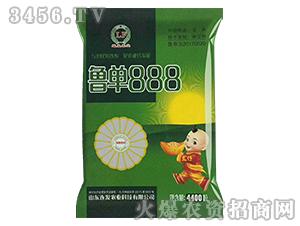 鲁单888(4400粒)-玉米杂交种-连发农业