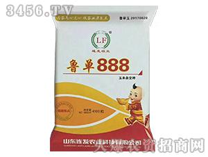 鲁单888(4500粒)-玉米杂交种-连发农业