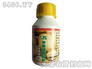 辛菌胺醋酸盐水剂-马铃薯病菌绝-德瑞森