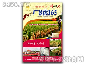 广8优165-水稻种子-金牌农业