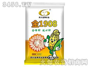金1908-玉米种子-金牌农业