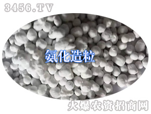 氨化造粒-田状元