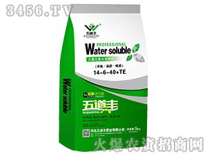 大量元素水溶肥料14-6-40+TE-五道丰