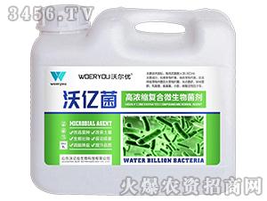 高浓缩复合微生物菌剂-沃亿菌-沃亿佳
