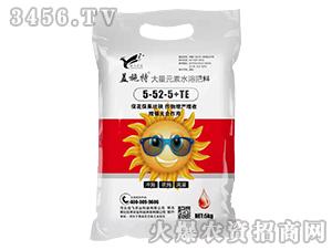 大量元素水溶肥料5-52-5+TE-盖施特-信飞农业