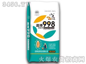 小麦种子998-小虎娃-晨博