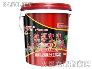 草莓宝宝-语农-胜华联邦