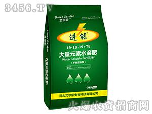 平衡营养型大量元素水溶肥19-19-19+TE-进能-艾尔蒙