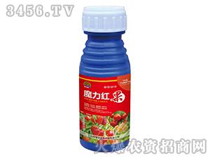 50ml魔力红果-强农生物