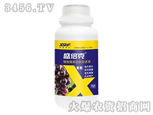 葡萄专用植物营养生长促进液-盛倍克-新盛禾丰