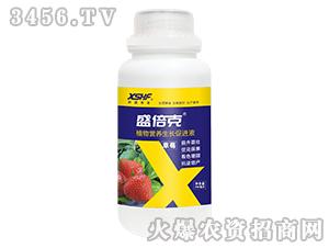 草莓专用植物营养生长促进液-盛倍克-新盛禾丰