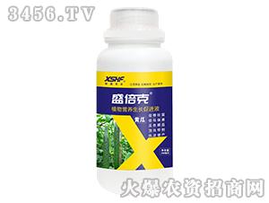 黄瓜专用植物营养生长促进液-盛倍克-新盛禾丰