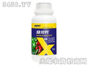 辣椒专用植物营养生长促进液-盛倍克-新盛禾丰