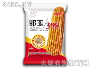 邯玉398(4500粒)-玉米种子-京石种业