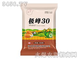 极峰30-玉米种子-京石种业