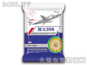 邯玉398-玉米种子-京石种业