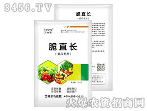 黄瓜专用脆直长-艾特农