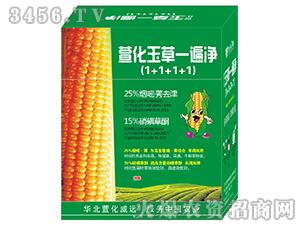 玉米田专用除草剂-萱化玉草一遍净-萱化威远