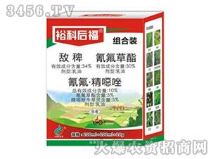 水稻田除草剂组合装-裕科后福-裕科化工