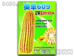 美单609-玉米种子-中科正高