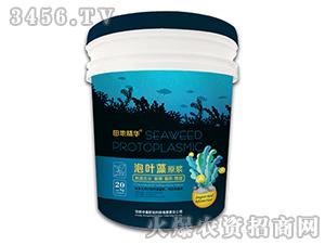 泡叶藻原浆-田地精华-中盛肥业