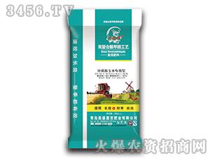 复混肥料(锌腐酸玉米专用型)23-10-7-兴福硕-福硕肥业