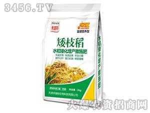 水稻矮化增产撒施肥-矮枝稻-禾瑞特