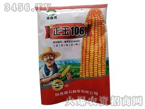 正玉106-玉米杂交种-豫鑫博