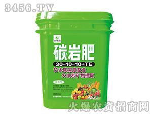 高氮型碳岩肥30-10-10+TE-一块田