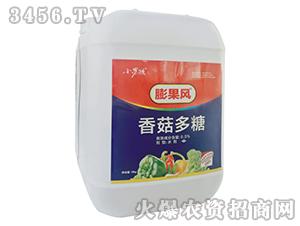 10kg香菇多糖-膨果风-小男孩