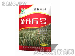 金谷6号-谷子种子-天粟农业