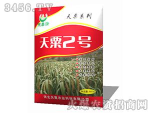 天粟2号-谷子种子-天粟农业