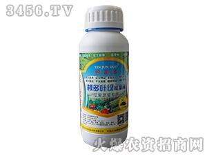 根多叶绿能量液(瓜果蔬菜专用)-蚓菌多-农沃绿