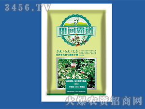 苍术、白术、艾草菊科中药材专用除草剂-田间霸道