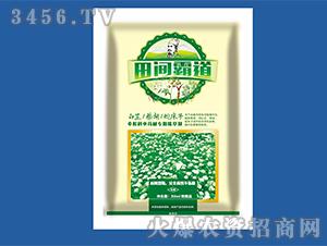 白芷、柴胡、蛇床子伞形科中药材专用除草剂-田间霸道