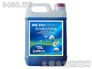 41%草甘膦异丙胺盐-蓝精灵-瀚昱