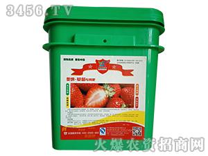 草莓专用肥-奥纳