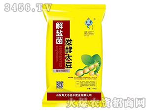 解盐菌发酵大豆微生物菌剂-倍丰肥业